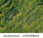 view from drone sugar cane... | Shutterstock . vector #1292408641