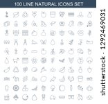 100 natural icons. trendy... | Shutterstock .eps vector #1292469031