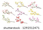 set of blooming branches of... | Shutterstock .eps vector #1292512471