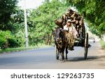 anuradhapura  sri lanka   dec 6 ... | Shutterstock . vector #129263735