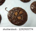 crinkle brownie cookies with... | Shutterstock . vector #1292935774