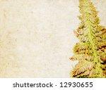 lovely brown background image... | Shutterstock . vector #12930655
