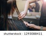 work of a hairdresser in...   Shutterstock . vector #1293088411