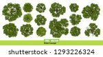 trees top view for landscape... | Shutterstock .eps vector #1293226324