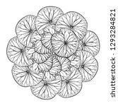 exotic  leaves black and white... | Shutterstock .eps vector #1293284821