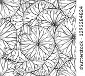 exotic  leaves black and white... | Shutterstock .eps vector #1293284824