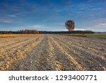 beautiful sunrise over the... | Shutterstock . vector #1293400771