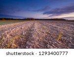 beautiful sunrise over the... | Shutterstock . vector #1293400777
