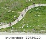 mountain bikers crossing the... | Shutterstock . vector #12934120