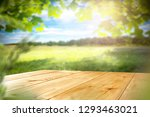 table background and spring... | Shutterstock . vector #1293463021