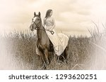girl in dress on horse in field ... | Shutterstock . vector #1293620251