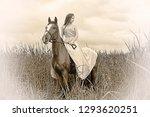 girl in dress on horse in field ... | Shutterstock . vector #1293620251