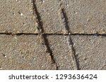 marks in concrete   Shutterstock . vector #1293636424