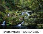 Nature River In Galicia