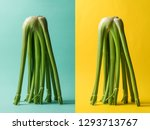 Celery composition concept on...