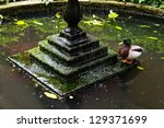 A Mallard Next To A Fountain
