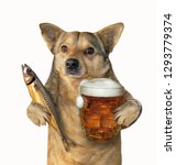 Small photo of The mutt dog is holding a glass of beer and smoked mackerel. Isolated. White background.