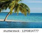 swimming pool near sea view and ... | Shutterstock . vector #1293814777