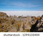 the incredible salt flat of... | Shutterstock . vector #1294133404