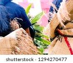 funeral attire  tonga   ... | Shutterstock . vector #1294270477