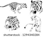 vector drawings sketches... | Shutterstock .eps vector #1294340284