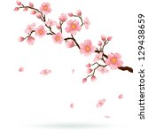 cherry blossom branch with... | Shutterstock .eps vector #129438659