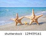 family holiday concept   sea...   Shutterstock . vector #129459161