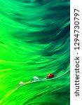 natural abstract summer spring...   Shutterstock . vector #1294730797