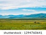 spectacular view of giant... | Shutterstock . vector #1294760641