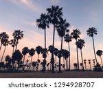 venice beach sunset landscape | Shutterstock . vector #1294928707