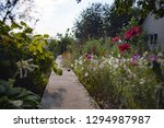 The Path Among The Flowers In...