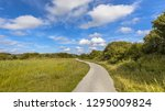 cycling track through dunes on... | Shutterstock . vector #1295009824