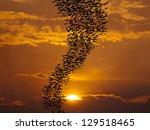 bats flying against sun and... | Shutterstock . vector #129518465
