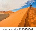 dune 45 in the salt pan... | Shutterstock . vector #1295450344