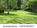 a perfect english country... | Shutterstock . vector #1295553427