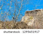 branches against the background ... | Shutterstock . vector #1295651917