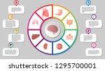 human organs infografic vector... | Shutterstock .eps vector #1295700001