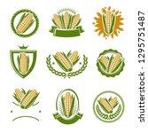 corn label and element set....   Shutterstock .eps vector #1295751487