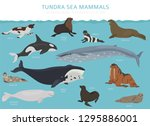 tundra biome. terrestrial... | Shutterstock .eps vector #1295886001