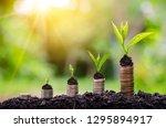 money growth saving money.... | Shutterstock . vector #1295894917
