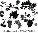 illustration with set of berry... | Shutterstock .eps vector #1296372841