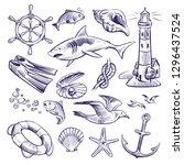 hand drawn marine set. sea... | Shutterstock .eps vector #1296437524