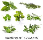 collection of fresh herbs ... | Shutterstock . vector #12965425