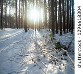 sunset in the winter forest.... | Shutterstock . vector #1296618304