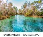 three sisters springs manatees   Shutterstock . vector #1296633397