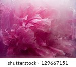 Frozen Beautiful    Pink Peony...