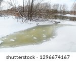 frozen river with trees on the... | Shutterstock . vector #1296674167