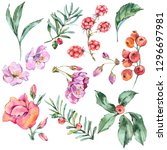 watercolor floral set of summer ... | Shutterstock . vector #1296697981