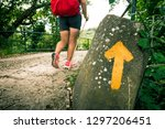 girl with backpack travels... | Shutterstock . vector #1297206451