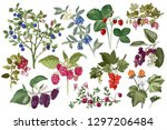 set of colorful hand drawn... | Shutterstock .eps vector #1297206484